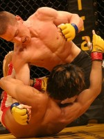 Mixed Martial Arts - Kampfsportstudio Zürich - Fight-World